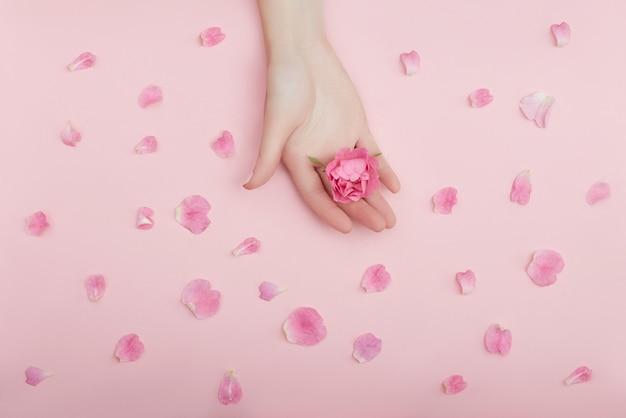 Beauté main d'une femme avec des fleurs rouges se trouve sur la table, la surface de papier rose. produit cosmétique naturel et soin des mains, hydratation et réduction des rides, soin de la peau
