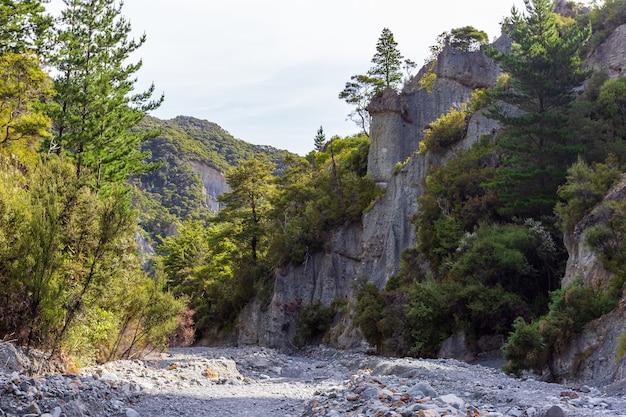 Beauté De La Nature. Doigt De Roche. Liffs De Putangirua Pinnacles. Nouvelle-zélande Photo Premium
