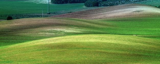 Beaux champs moraves