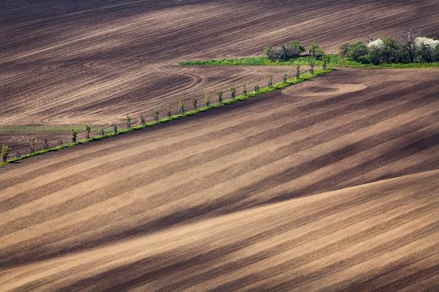 Beaux champs en moravie du sud, république tchèque