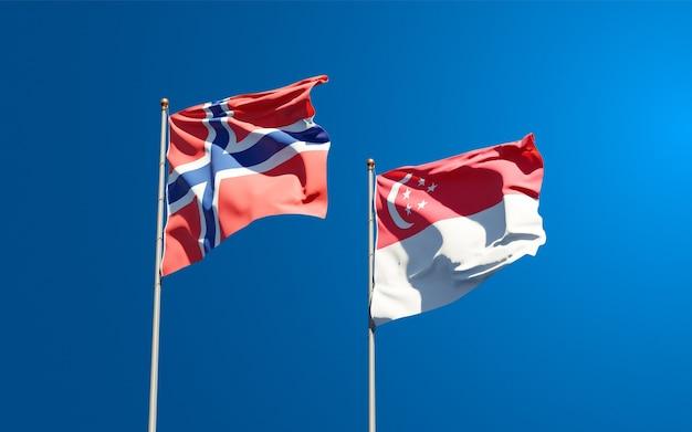 Beaux drapeaux nationaux de la norvège et de singapour ensemble