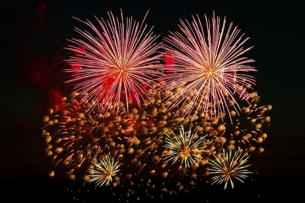 Beaux feux d'artifice festifs dans le ciel nocturne