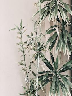 Beaux palmiers verts exotiques en face du mur rose pâle
