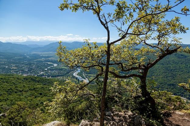 De beaux paysages à adygea, de hautes montagnes verdoyantes, la rivière belaya, des ponts d'observation et d'innombrables forêts verdoyantes dans les vallées et sur les pentes des montagnes