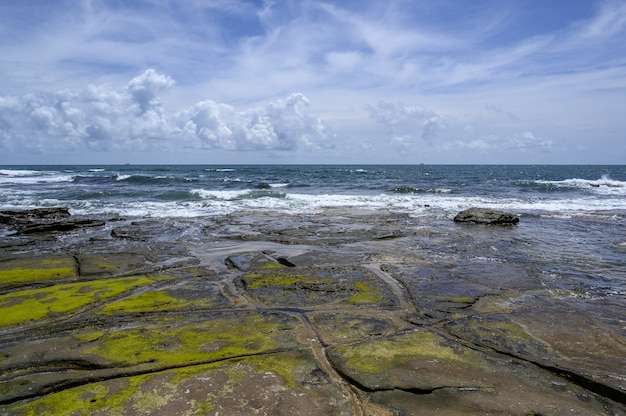 Beaux paysages de la côte de la plage de shelley, sunshine coast, australie