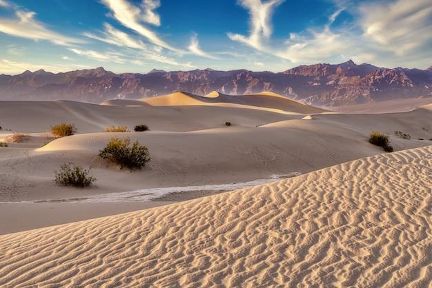 Beaux paysages des dunes de sable plat de mesquite, death valley, californie