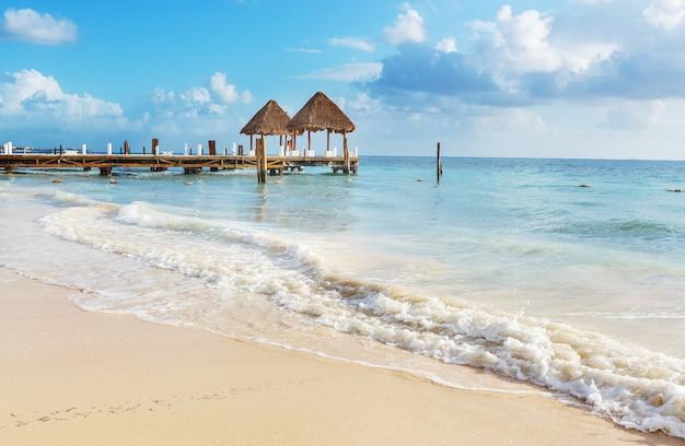 Beaux paysages d'été sur la plage tropicale