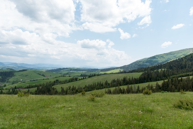 Beaux paysages des montagnes des carpates ukrainiennes