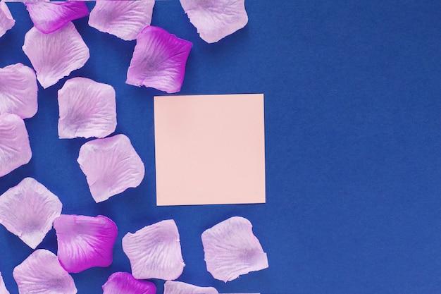 Beaux pétales roses sur fond bleu