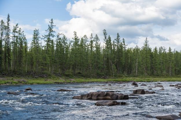Beaux rapides sur la rivière. sibérie orientale. territoire de krasnoïarsk