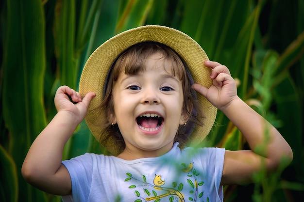 Bébé dans le champ de maïs