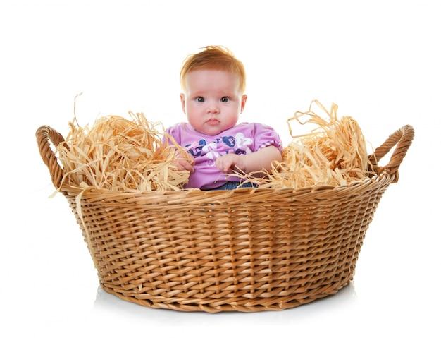 Bébé dans le panier