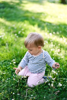 Le bébé s'assied sur ses genoux sur une pelouse verte parmi les fleurs blanches