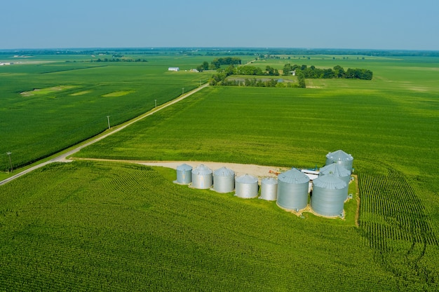 Bec terminal d'élévateur à grains chargeant des silos de maïs-grain, des conteneurs de stockage séchant un complexe de grains