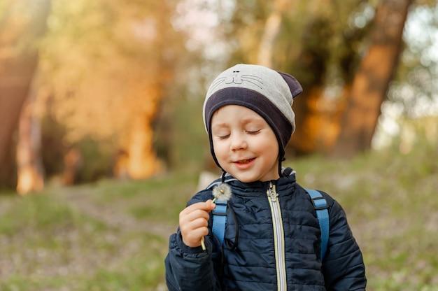 Bel enfant avec fleur de pissenlit dans le parc un enfant s'amuse