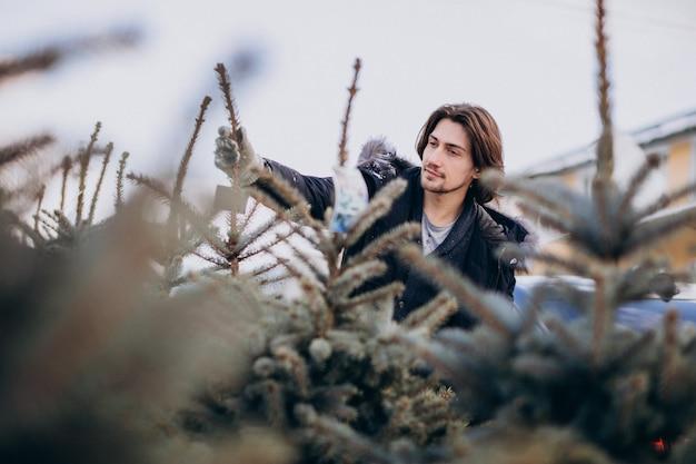 Bel homme choisissant un arbre de noël