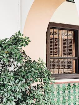 Bel immeuble ancien avec arc, fenêtre et grand vert luxuriant