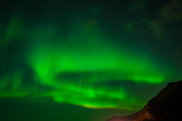 Belle aurore boréale dans les îles lofoten