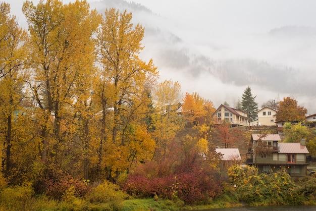 Belle d'automne
