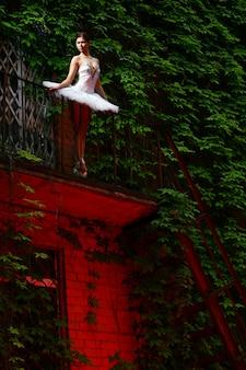 Belle ballerine danse ballet