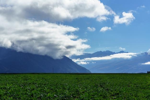 Belle campagne de paysages de l'île du sud de la nouvelle-zélande à l'automne