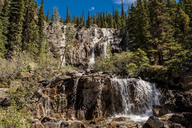Belle cascade en cascade. cascades de tangle creek dans le parc national jasper, alberta, canada