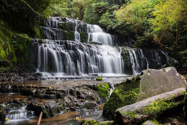 Belle cascade dans la forêt tropicale verte, nouvelle-zélande