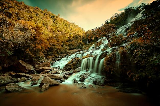 Belle de cascade dans la forêt tropicale.