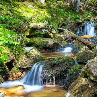 Belle cascade dans la forêt verte. cascade d'eau en mouvement