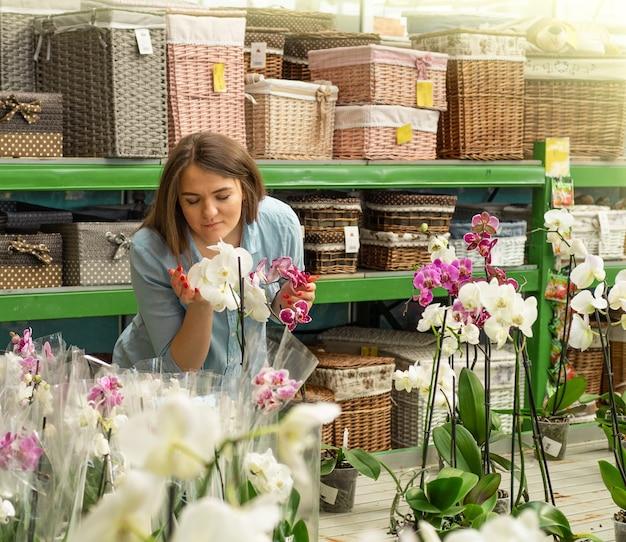 Belle cliente sentant des orchidées en fleurs colorées dans le magasin de détail. jardinage en serre. jardin botanique, floriculture, concept de l'industrie horticole