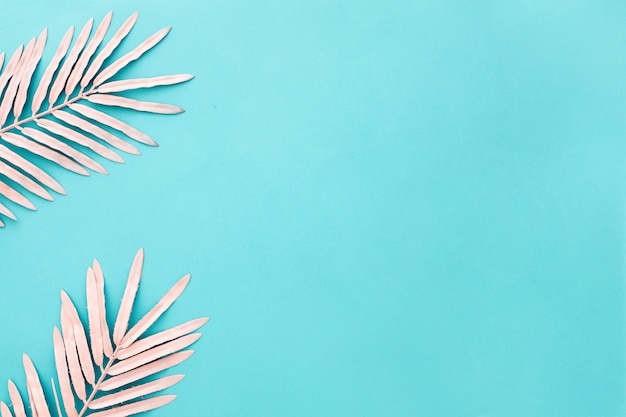 Belle composition avec des feuilles de palmier rose sur bleu clair avec fond