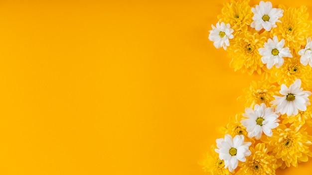 Belle composition de fleurs de printemps avec espace copie