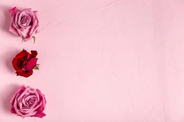 Belle composition de roses avec espace copie