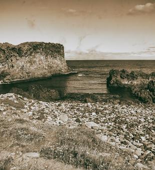 Belle côte d'arnarstapi en saison estivale, islande.