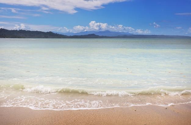 Belle côte tropicale de l'océan pacifique au costa rica