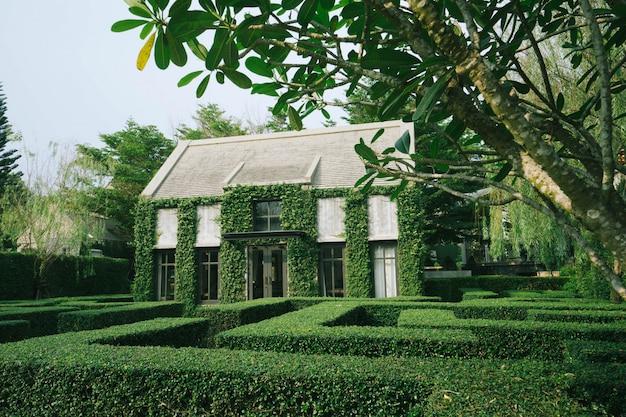 Belle décoration d'un bâtiment de style campagnard anglais recouvert de plante grimpante verte