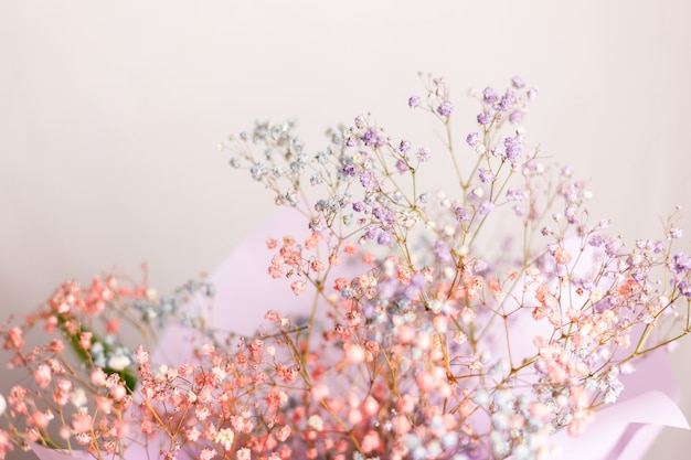 Belle décoration mignonne petites fleurs colorées séchées, papier peint.