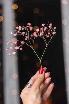 Belle décoration mignonnes petites fleurs colorées séchées sur fond noir foncé, papier peint.