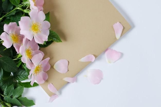 Belle doge rose fleurs