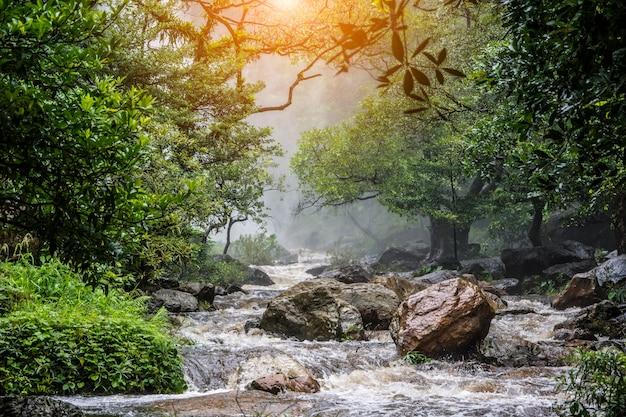 Belle eau tombe sur la roche