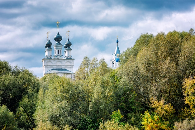 Belle église avec des dômes dans le feuillage vert dense des arbres.