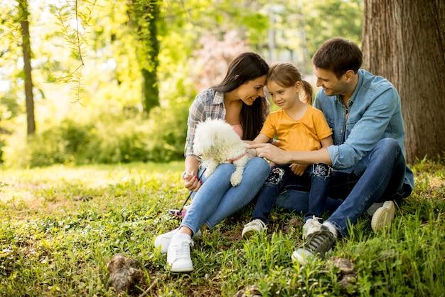 Belle famille heureuse s'amuse avec un chien bishon sous l'arbre à l'extérieur