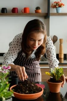 Belle femme asiatique portant un tablier préparant et organisant des gousses de petites fleurs et de petits arbres pour la décoration dans un nouveau café ouvert.
