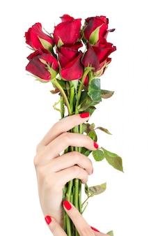 Belle femme à la main avec des clous rouges, tenant une rose rouge isolée sur fond blanc