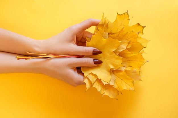 Belle femme mains sur un fond, tenant les feuilles d'automne jaunes.