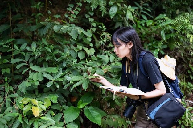 La belle femme touchant une feuille verte pour des données de recherche sur la botanique
