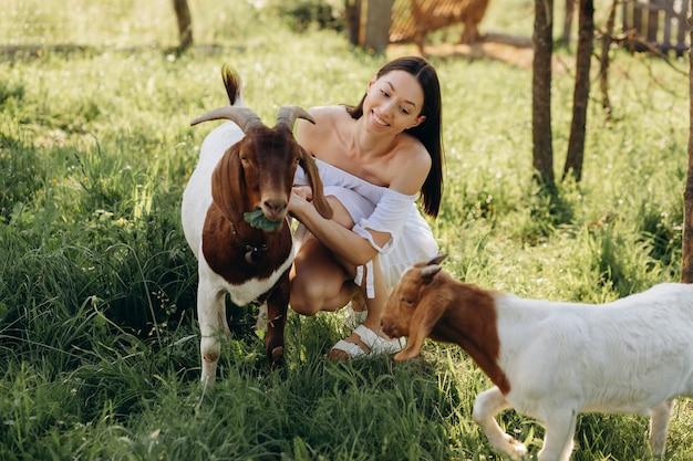 Belle femme vêtue d'une robe blanche nourrit les chèvres et leurs enfants verts dans une ferme écologique.