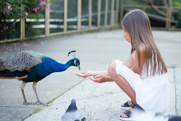Belle fille nourrit un paon dans le parc, joli bébé.