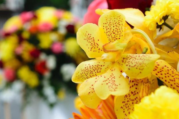 Belle fleur d'orchidée dans un bouquet, naturellement belles fleurs dans le jardin