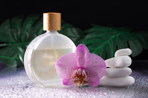 Belle fleur d'orchidée lilas et bouteille transparente d'eau de toilette ou de parfum avec pierres blanches